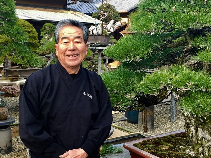 The Art of the Bonsai