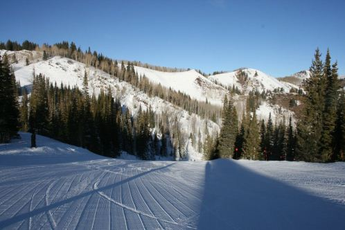 beautifully groomed runs at the canyon