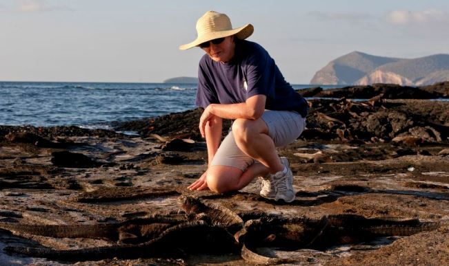 Luxury Travel Adventures in Galapagos Islands