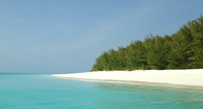 Luxury Travel in Mnemba Island